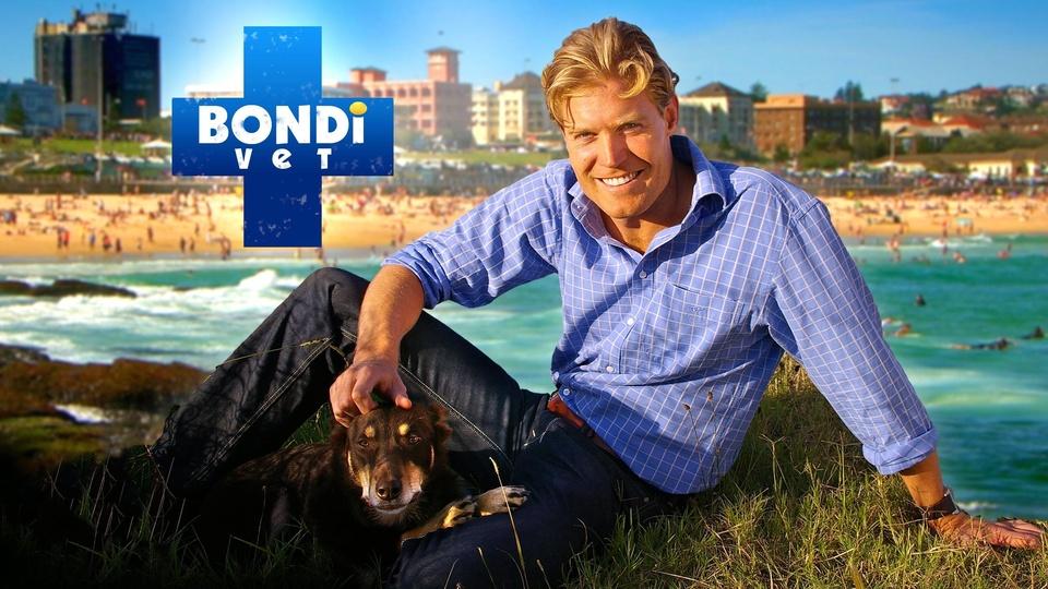 Dokument Veterinář z Bondi Beach