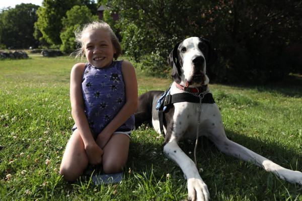 Psi s neobvyklým posláním