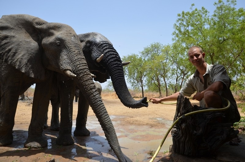 Dokument S Arthurem za slony