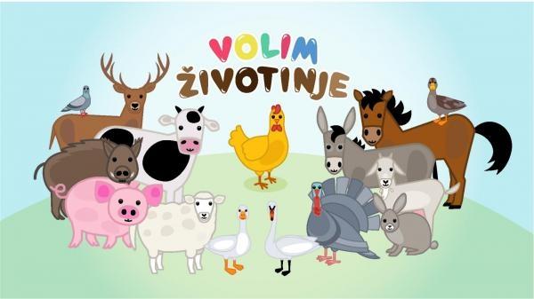 Volim životinje ZOO: Prehrana životinja